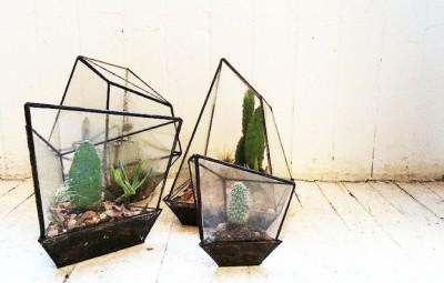 DIY planten terrarium