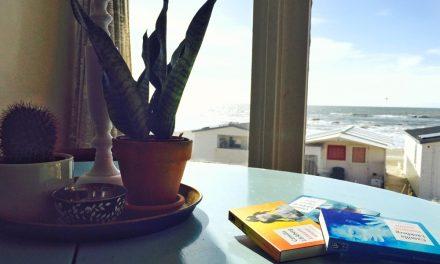 Lezen aan zee: de boeken van Camilla Läckberg
