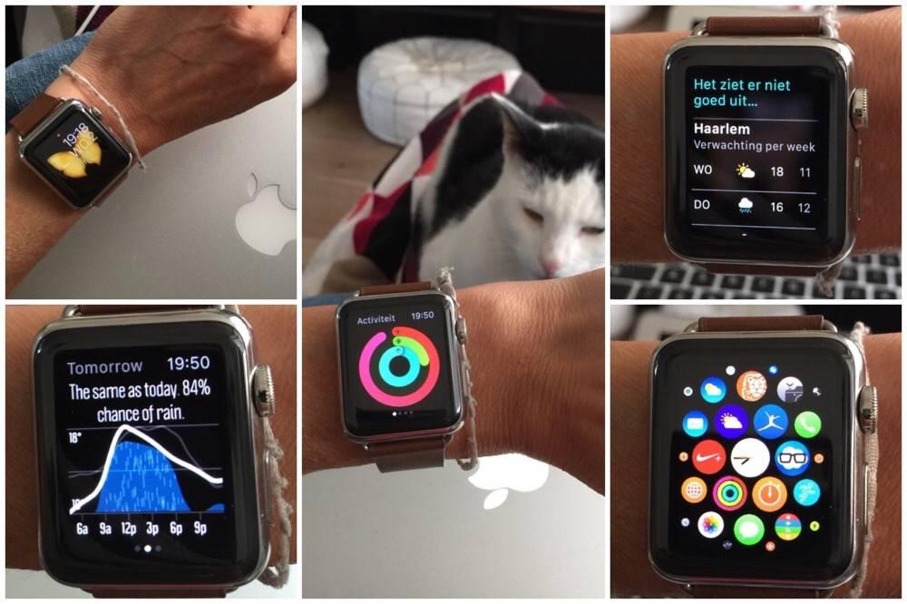 apple watch blog - OHimP