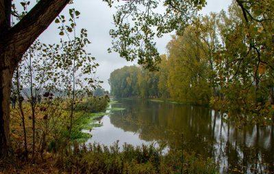 herfstfotografie