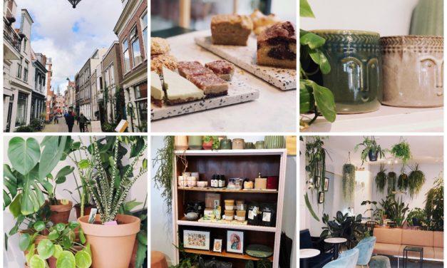 Hotspot tip: koffiebar MICA in Haarlem