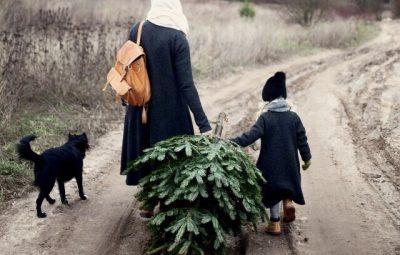 kerstbomen traditie