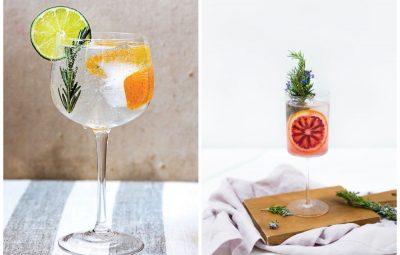 Gin-tonic recipes