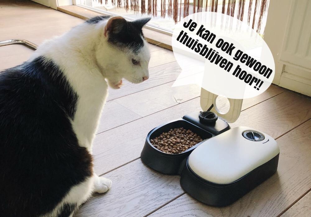 kattenvoerbak met timer