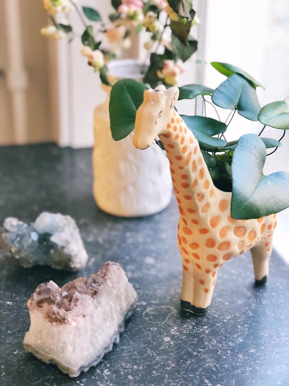 giraf plantenpotje