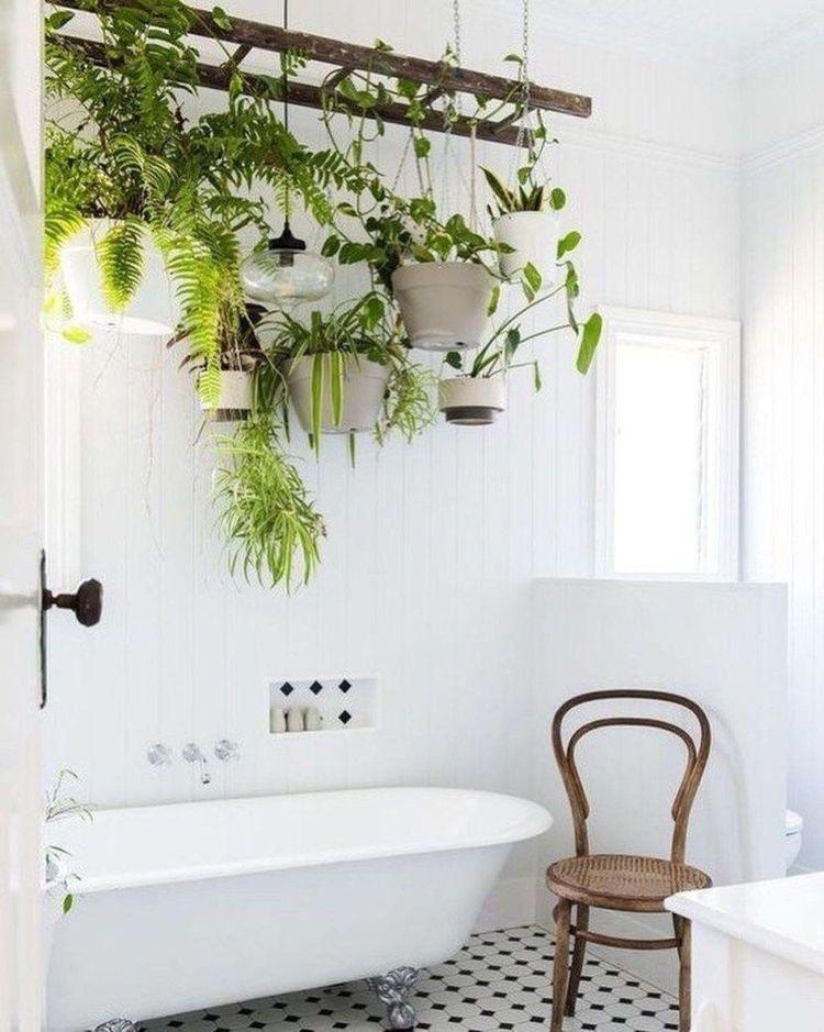 Planten Voor In De Badkamer.Planten In De Badkamer Dit Zijn 6 Toppers One Hand In My