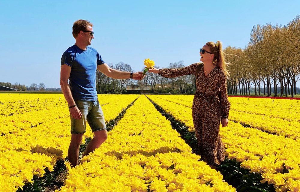 Op pad met boer Tom: de tulpenvelden van Hollands Kroon