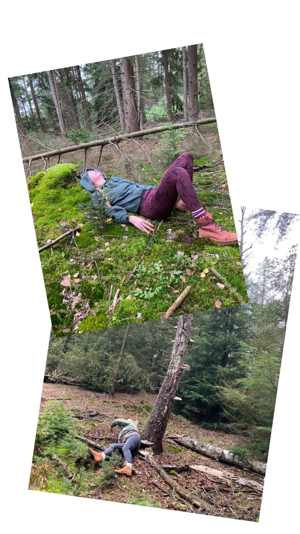 yoga in het bos