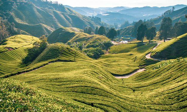 5 vakantietips voor Langkawi in Maleisië