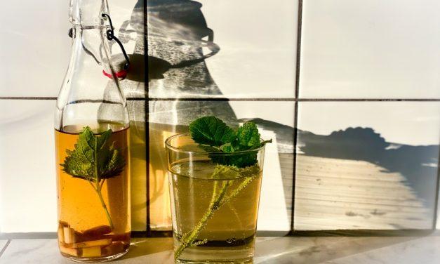Zelf limonade maken met citroengras en citroenmelisse
