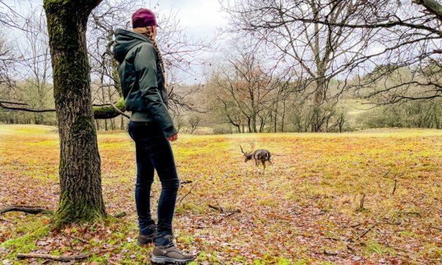 Waarom wandelen gezond is? 10 redenen